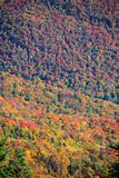 Mount Mansfield near Stowe city in Vermont. Mount Mansfield fall foliage near Stowe city in Vermont royalty free stock photo