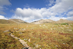 Mount Massive Trail. Trail up towards the summit of Mount Massive crosses alpine tundra above treeline Stock Photography