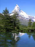 Mount Matterhorn reflects from lake. Mount Matterhorn reflects from a wooded mountain lake Stock Photography