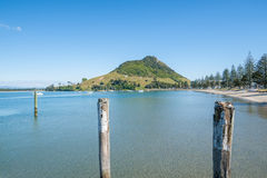 Mount Maunganui along beach of Pilot Bay Royalty Free Stock Photo