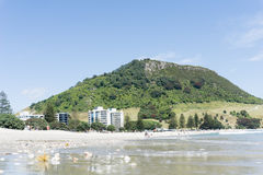 Mount Maunganui and beach foreground in summer. Stock Photos