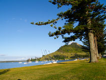Mount Maunganui, harbour view. Royalty Free Stock Image