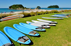 Mount Maunganui - New Zealand. MOUNT MAUNGANUI, NZL - JAN 18 2015:Surfing boards in Papamoa beach reserve in Mount Maunganui. It's a very popular travel royalty free stock images