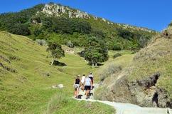 Mount Maunganui - New Zealand Royalty Free Stock Photos