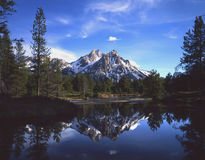 Mount McGown & Reflection. Mt. McGown reflecting in a creek running through Idaho's Sawtooth National Forest royalty free stock photos