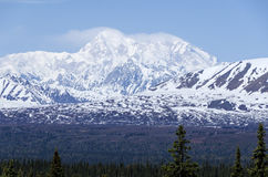 Mount McKinley Alaska Royalty Free Stock Image