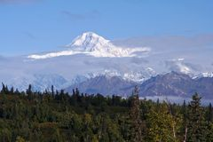 Mount McKinley from a distance. Mount McKinley covered with snow, taken from a distance, with a forest in the foreground, light clouds Royalty Free Stock Photo