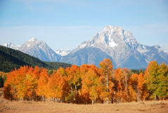 Mount Moran. Fall view of Mount Moran in Grand Teton National Park, Wyoming Stock Images