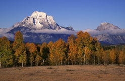 Mount Moran Stock Photo