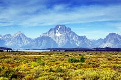 Mount Moran from Willow Flats in Grand Teton National Park, Wyoming royalty free stock photography