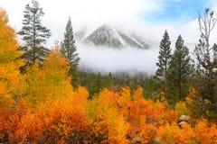 Mount Morgan. Peak in Sierra mountains royalty free stock photography