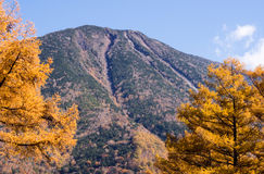 Mount Nantai with fall colors in Nikko national park Stock Photography