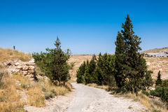 Mount Nebo, Asia. Holy Land, view from the Mount Nebo, the place where Moses was granted a view of the Promised Land that he would never enter Stock Photos