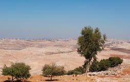 Mount Nebo, road, Jordan, Middle East, desert, landscape, climate change. Jordan 05/10/2013: Jordanian and desert landscape with the winding road to Mount Nebo Royalty Free Stock Images