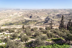 Mount Nebo in Jordan Stock Photos