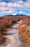 Mount Ngaurohoe (Mount Doom) Royalty Free Stock Photos