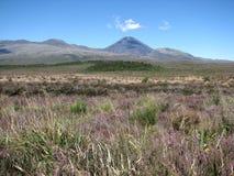 Mount Ngauruhoe or Mount Doom LOTR Royalty Free Stock Photos