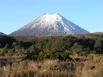 Mount Ngauruhoe Royalty Free Stock Photos