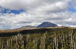 Mount Ngauruhoe Royalty Free Stock Photography