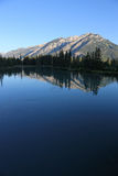 Mount Norquay Bow Reflection Stock Photography