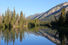 Mount Norquay Reflection in the Bow River Stock Image