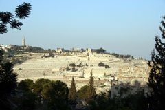 The Mount of Olives Royalty Free Stock Image