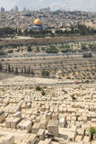Mount of Olives Cemetery Stock Images