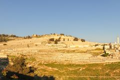 The Mount of Olives in Jerusalem Royalty Free Stock Photography