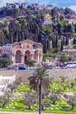 Mount of Olives, Jerusalem. Church of All Nations and Mary Magdalene Convent on the Mount of Olives, Jerusalem, israel royalty free stock images