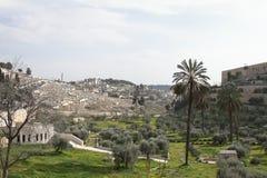 Mount of Olives - Jerusalem - Israel Stock Photos