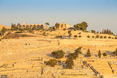 Mount of Olives, Jerusalem, Israel Royalty Free Stock Photo