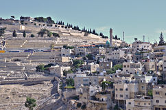 Mount of Olives och Silwan by Royaltyfri Fotografi