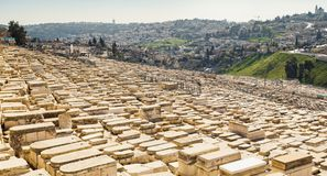 Mount of Olives and the old Jewish cemetery in Jerusalem, Israel Royalty Free Stock Photo