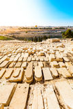 Mount of Olives and the old Jewish cemetery in Jerusalem, Israel Royalty Free Stock Photos
