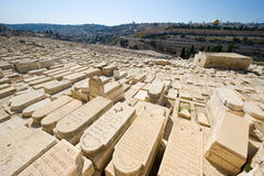 Mount of olives Royalty Free Stock Photography