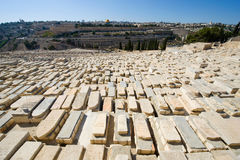 Mount of olives Royalty Free Stock Photos