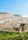 Mount of Olives Stock Images
