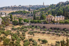 Mount of Olives and Shurch of All Nations. Royalty Free Stock Images