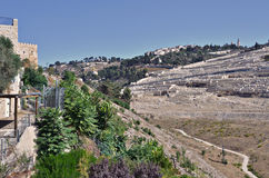 Mount of Olives Royalty Free Stock Photo