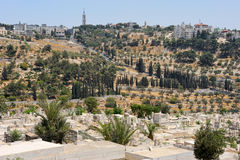 Mount of Olives from the walls of Jerusalem. Stock Photography