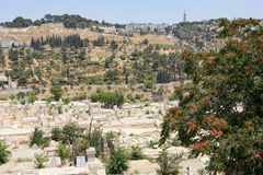 Mount of Olives from the walls of Jerusalem. Stock Photo