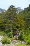 Mount Olympus Royalty Free Stock Images