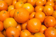 Lot of Oranges Stock Image