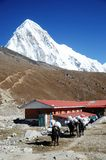 Mount Pumori above huts in Nepal Stock Photography