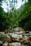 Mount Qingcheng стоковое изображение