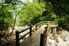 Mount Qingcheng стоковые фотографии rf