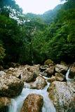 Mount Qingcheng стоковое фото