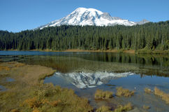 Mount Rainer, Washington Royalty Free Stock Images