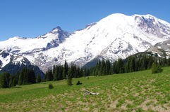 Mount Rainier. In summer at Sunrise Stock Image