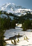 Mount Rainier 3 Stock Photos